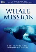 Whale Mission
