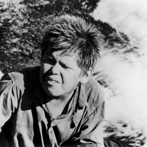 Lord Of The Flies 1963 Rotten Tomatoes