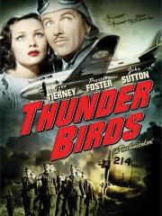 Thunder Birds