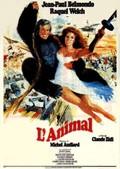 L'Animal (Stuntwoman)