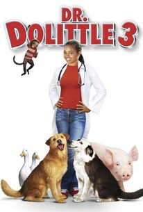 doctor dolittle 1998 dual audio