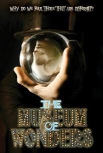 The Museum Of Wonders