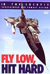 Fly Low, Hit Hard