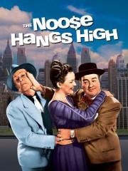 The Noose Hangs High