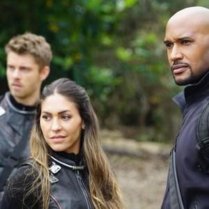 torrent marvel agents of shield season 3