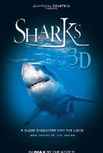 Sharks 3D