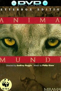 Anima Mundi (The Soul of the World)