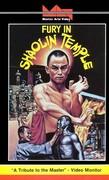 Fury in Shaolin Temple