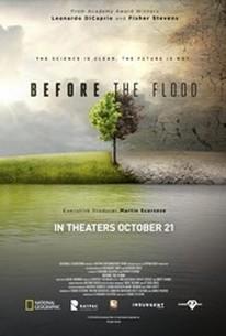 Sustainable Cinema: Before the Flood