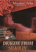 Dragon From Shaolin