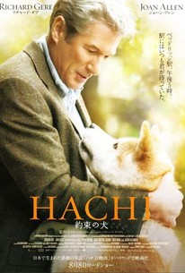 hachi a dogs tale 1080p download