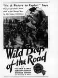 Wild Boys of the Road (Dangerous Days)