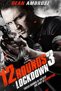 12 ROUNDS 3 LOCKDOWN (2015)