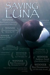 Saving Luna: The True Story of a Lone Orca