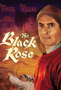 The black rose 1950 rotten tomatoes the black rose voltagebd Images