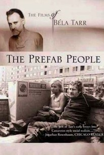 Panelkapcsolat (The Prefab People)