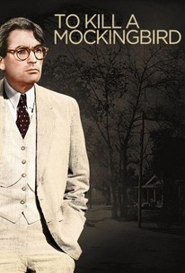 to kill a mockingbird what is it about