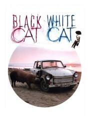 Crna macka, beli macor (Black Cat, White Cat) (1999)
