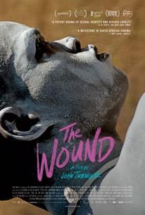 The Wound (Inxeba)
