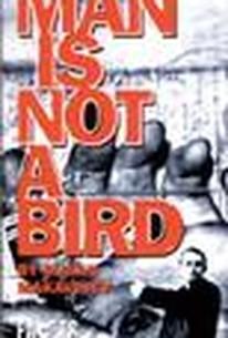Man is Not a Bird (Covek nije tica)