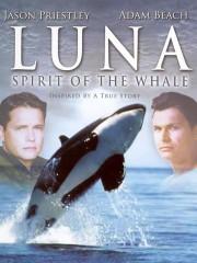 Luna: Spirit of the Whale