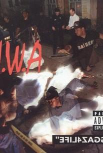 N.W.A.: Efil4zaggin - The Only Home Video