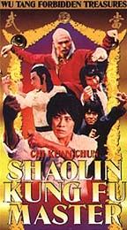 Shaolin Kung Fu Master