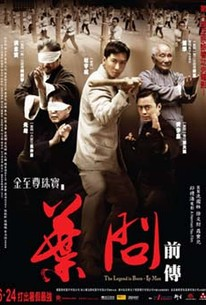 The Legend Is Born: Ip Man (Yip Man chinchyun)