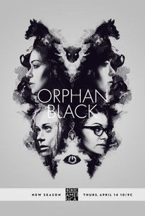 orphan black torrent kickass