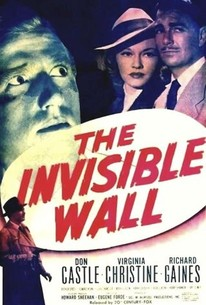 Invisible Wall