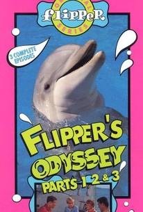 Flipper's Odyssey