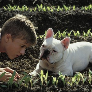 Secondhand Lions (2003) - Rotten Tomatoes