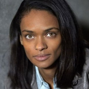 Kandyse McClure as Dr. Chausser