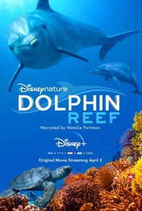 Disneynature: Dolphin Reef