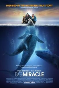 Big Miracle