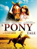 A Talking Pony