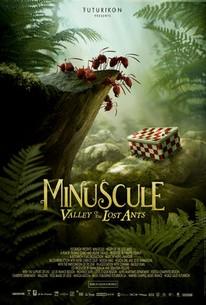Minuscule: Valley of the Lost Ants (Minuscule - La vallée des fourmis perdues)