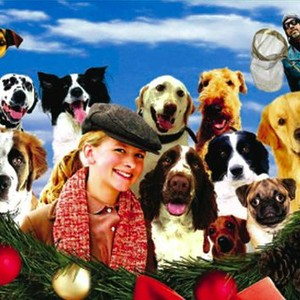 12 Dogs Of Christmas.The 12 Dogs Of Christmas 2005 Rotten Tomatoes