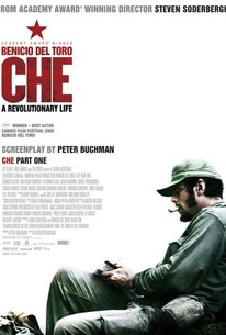 Che: Part One (The Argentine)