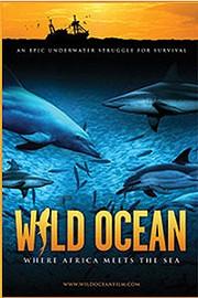 Wild Ocean