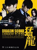 Dragon Squad (Maang lung)
