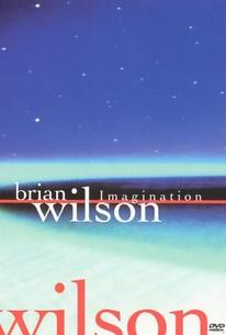 Brian Wilson: Imagination