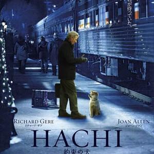 Hachi A Dogs Tale Photos