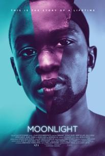 Moonlight 2016 Rotten Tomatoes