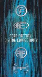 Fear in the Night (Dynasty of Fear) (Honeymoon of Fear)