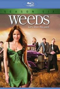 weeds season 8 episode 12 online