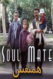 Soul Mate (l'anima Gemella)