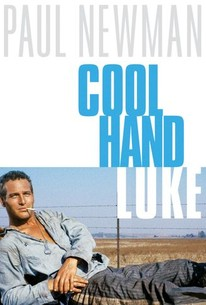 Cool Hand Luke (1967) - Rotten Tomatoes
