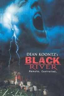 Dean Koontz's 'Black River'