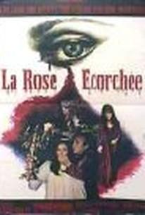 La Rose écorchée (Devil's Maniac) (Ravaged) (The Blood Rose) (The Burnt Rose) (The Flayed Rose)